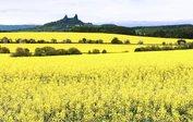 Böhmisch-mährisches Hügelland